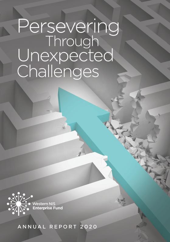 WNISEF Annual Report 2020